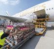 50. Airbus A380 dołączył do floty Emirates