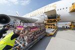A380_Emirates_50th_04.jpg
