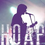 hoap1
